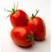 Roma Tomatoe