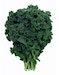 Lacinato Kale (FL)