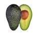Hass Avocado (MX)
